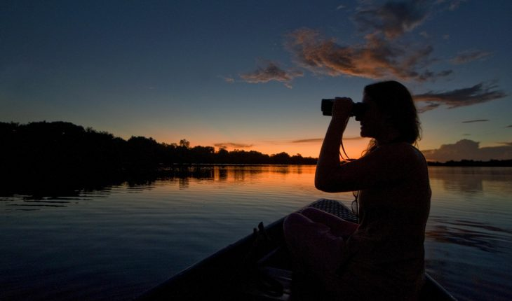 Exploring varzea flooded forest with snall boat, Amazon, Rio Negro, Brazil